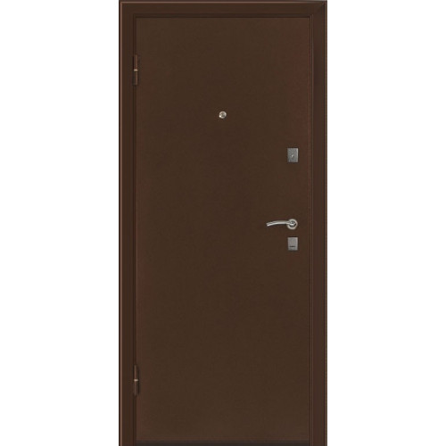Дверь БАСТИОН 3